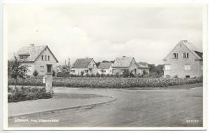 linneav1940tal